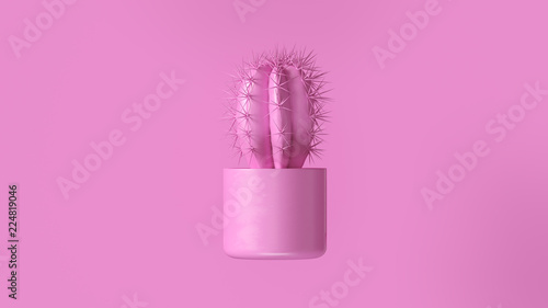 Różowy kaktus z Różową roślina garnkiem 3d ilustracja 3d odpłaca się