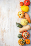 Assortment of pumpkins and gourds on the white wooden table background, top view, copy space for text, vertical, selective focus - 224912248