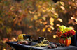 Autumn still life with a pumpkin, chrysanthemums and black cups on a table in the autumn forest