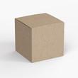 Cardboard product box isolated on white background mockup.