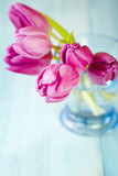 Pink Tulips. Flower background. Wooden background. Close up. Copy space. - 225033058