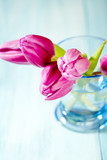 Pink Tulips. Flower background. Wooden background. Close up. Copy space. - 225036809