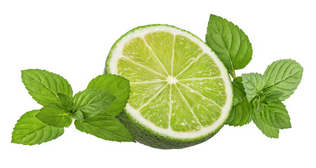 Fresh mint leaf and lime isolated on white background