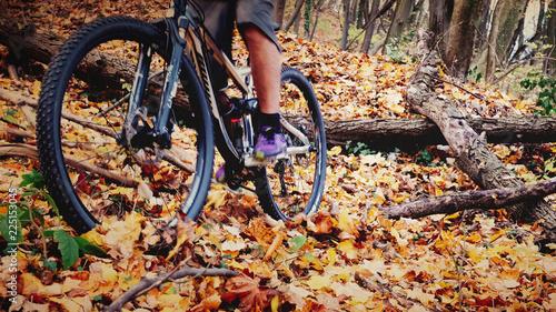 Leinwandbild Motiv Exploring the nature on bike