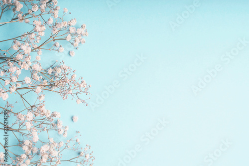 Leinwanddruck Bild Light blue floral background with white Gypsophila flowers and copy space for your design. Baby's-breath flowers on pastel blue desktop.