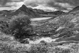 Stunning panorama landscape image of stream flowing over rocks near Llyn Ogwen in Snowdonia during eary Autumn with Tryfan in background - 225221428