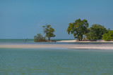 Trees rise from the white sand of a low island surrounded by blue sea and sky in the Caribbean Sea off Isla Holbox, Mexico. - 225244071