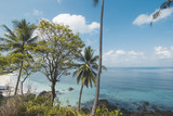 Beautiful Tropical Beach with Coconut Tree and Blue Sky - 225264817