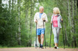 Leinwanddruck Bild - Senior active couple practicing trekking in park among green trees on summer weekend