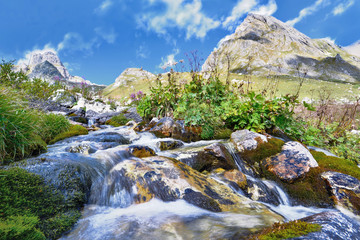 Water of a torrent flowing on stones into the mountain
