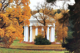 autumn landscape / yellow trees in autumn park, bright orange forest - 225308477