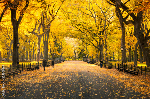 Herbst im Central Park in New...