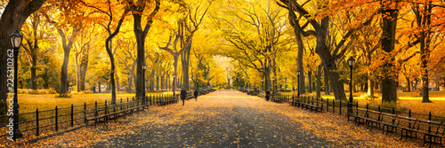 Leinwandbild Motiv Herbst Panorama im Central Park in New York City, USA