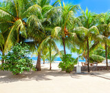 Pictorial scene of the tropical beach with white sand and palm trees, Mahe, Seychelles. - 225331822