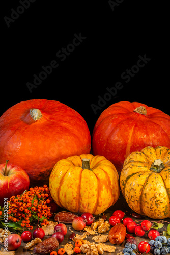 Traditional German Autumn pumpkins, berries and nuts as still-life - 225362291