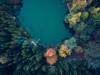 Aerial view of a lake surrounded by colorful trees in the forest at autumn