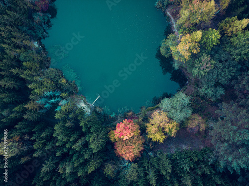 Foto Murales Aerial view of a lake surrounded by colorful trees in the forest at autumn