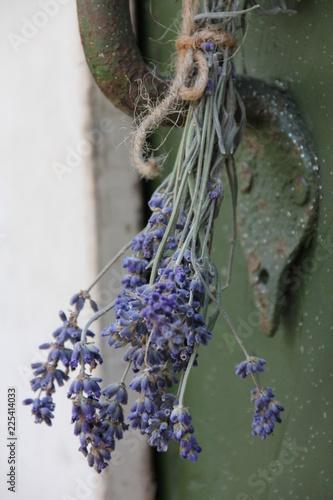 Lavendelbündel an Holztür - 225414033