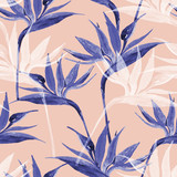 Exotic flowers in monochrome colors, transparent on pastel background - 225478601