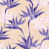 Exotic flowers in monochrome colors, transparent on pastel background - 225478608