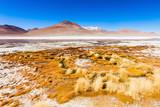 Lake, Bolivia Altiplano - 225483873