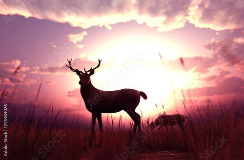 deer-in-grass-field-at-sunset-or-sunrise-3d-illustration