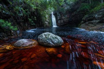 River in forest garden