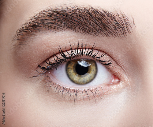 Female eye zone and brows with day nude makeup - 225519016