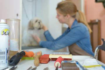 pet grooming business © auremar