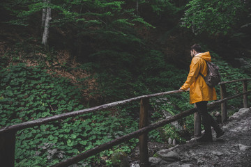man walking by forest trail to waterfall in yellow raincoat