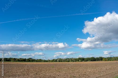 Leinwandbild Motiv schöner blauer Wolkenhimmel über abgemähtes Feld. Standort: Deutschland, Nordrhein - Westfalen, Borken