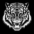 Vector image of a white tiger muzzle on a black background.