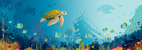 Underwater wildlife - turtle, coral reef, fish, sunken ship, sea. © Natali Snailcat