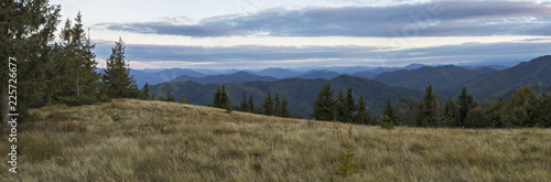 A wonderful evening landscape in the Ukrainian Carpathians. charming evening colors in the Carpathians - 225726677
