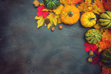 Autumn background with colorful leaves and pumpkins © k2photostudio