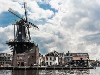 Windmill in Haarlem © egokhan