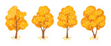 Autumn trees set