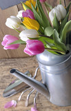 close on a bouquet of tulips in a metal watering can on a gardening table