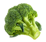 broccoli isolated on white without shadow - 225812224