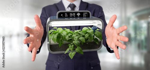 Foto Murales Businesmann holding a Digital vegetal plant connected
