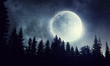 Leinwanddruck Bild - Full moon in sky