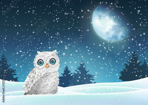 Winter background, owl sitting in snow under moon © Anikakodydkova