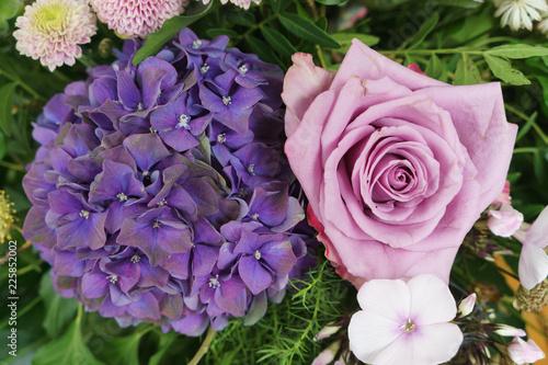 Blumen lila und rosa