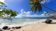 Leinwanddruck Bild - Cayo Levantado: Antillen, Karibik, Ferien, Tourismus, Sommer, Sonne, Strand, Auszeit, Meer, Glück, Entspannung, Meditation, Palmen, Mangroven: Traumurlaub an einem einsamen, karibischen Strand :)