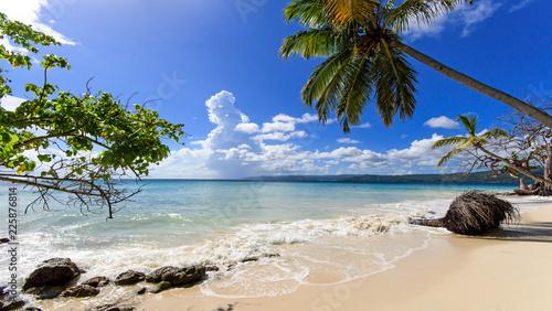 Leinwanddruck Bild Cayo Levantado: Antillen, Karibik, Ferien, Tourismus, Sommer, Sonne, Strand, Auszeit, Meer, Glück, Entspannung, Meditation, Palmen, Mangroven: Traumurlaub an einem einsamen, karibischen Strand :)