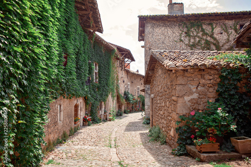 Ancient medieval walled town Perouges. Commune in the Ain department in eastern France. Old stone houses with grapes on the wall. Beautiful street with red flowers in the small town - 225880846