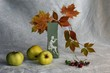 Autumn still life with green apples.