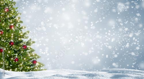 Leinwanddruck Bild weihnachtsbaum im schnee