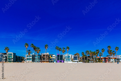 Houses and palm trees near Venice Beach, Los Angeles