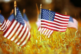 Group of American flags in yellow and orange Autumn grass - 225954479